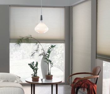 roller shades in San Antonio home